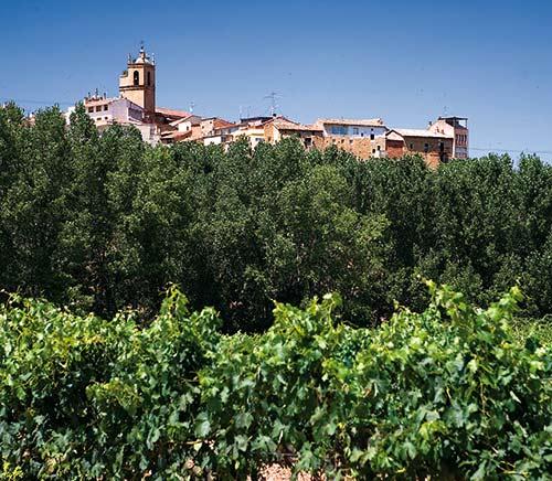Rioja Alavesa - Lapuebla de Labarca