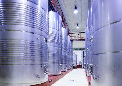 Proceso de elaboración del vino - Bodegas Estraunza